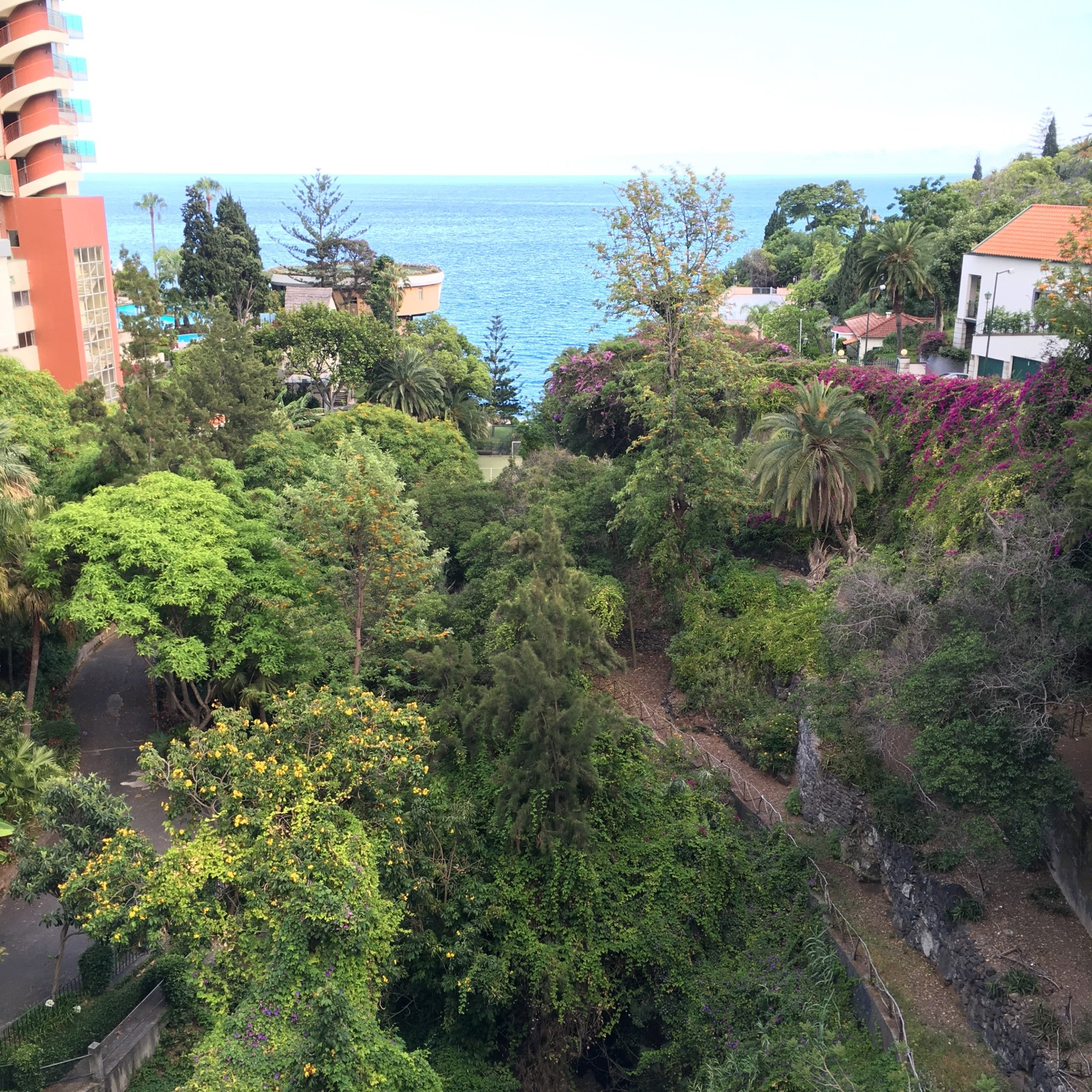Dizzy heights in Madeira